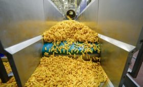 Производители овощей попросили внести в контрсанкции картофель фри
