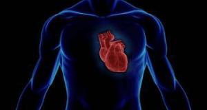 Популярный антибиотик провоцирует остановку сердца — исследование