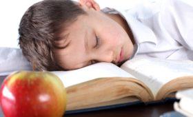 Хороший сон после учебных занятий улучшает память