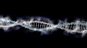 Учёные показали анимированную ДНК