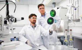 Ученые объяснили, почему мужчины больше подвержены заболеваниям костной ткани