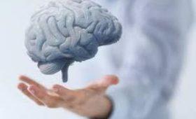 Британские ученые придумали, как затормозить старение мозга