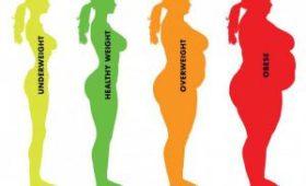 Классификация ожирения