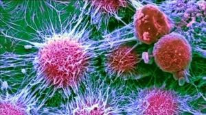 Нехватка кислорода дает опухолевым клеткам преимущества