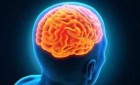 Сотрясение меняет способ передачи информации в головном мозге